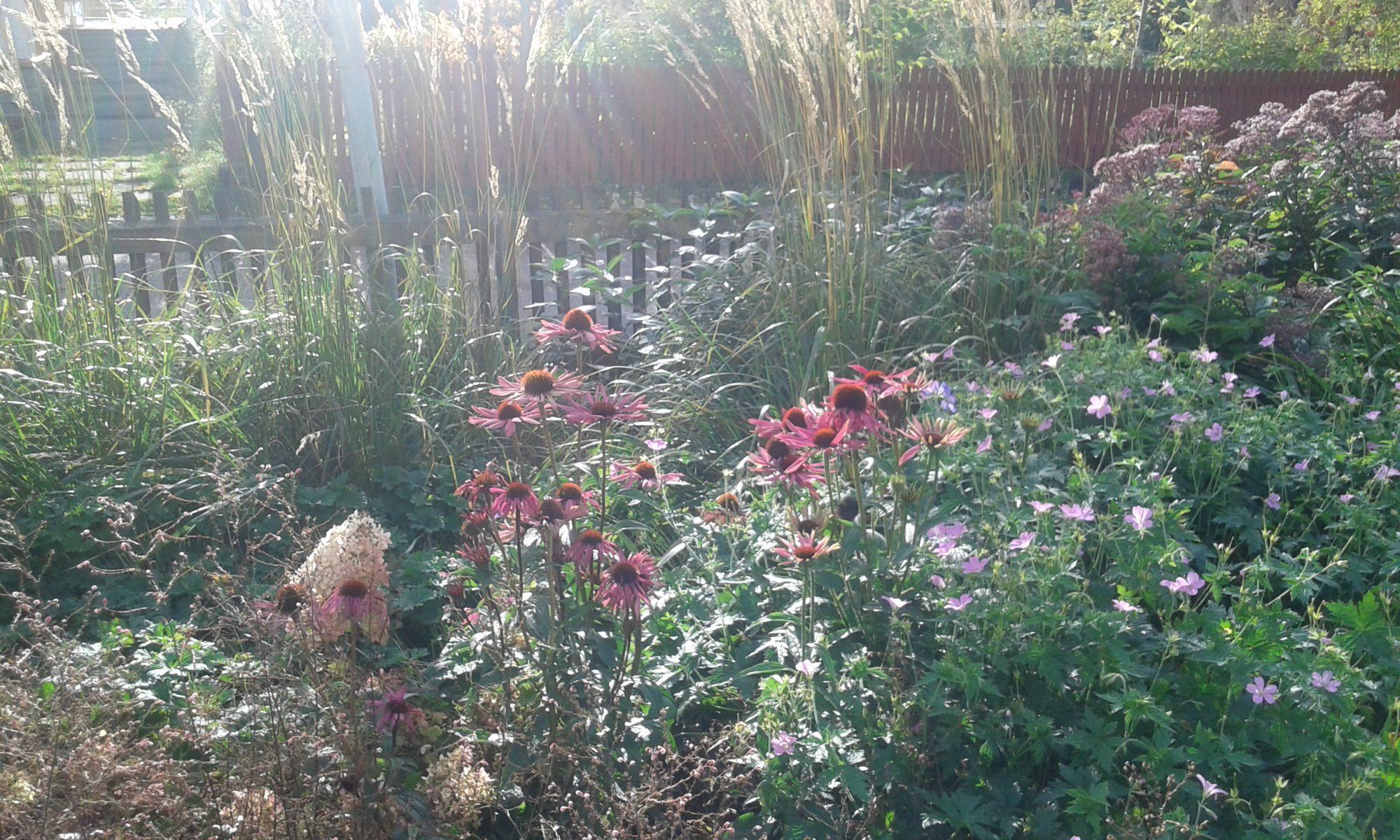 Trädgårdslycka